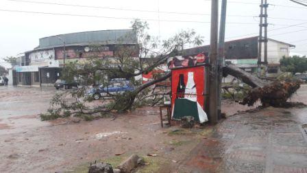 La-lluvia-no-provoco-fuertes-emergencias