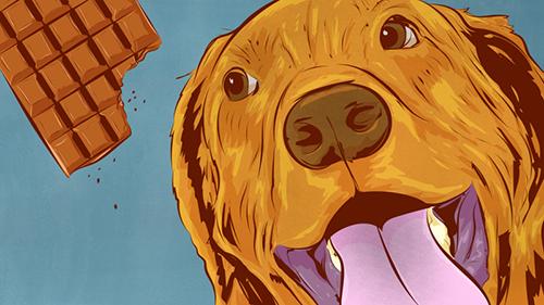 Cuales-son-las-comidas-mas-peligrosas-para-los-perros-(y-por-que)
