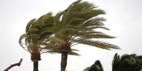 Pronostican-fuertes-vientos-para-este-fin-de-semana-en-Santa-Cruz