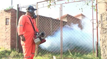 Avanza-el-control-contra-el-mosquito