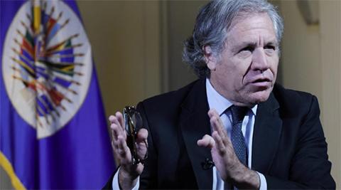 Secretario-de-la-OEA-reconoce-a-Guaido-como-presidente--interino--de-Venezuela