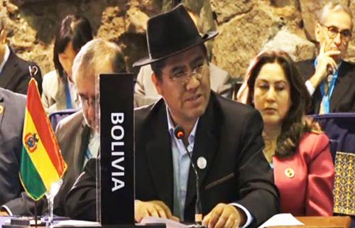 Gobierno-dice-que-no-es-aplicable-la-Carta-Democratica-de-la-OEA-en-Bolivia