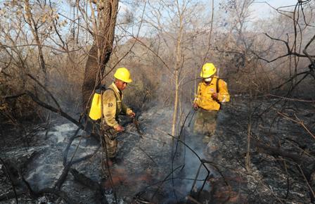 -Arreglar-el-problema-de-incendios--demorara-250-anos-