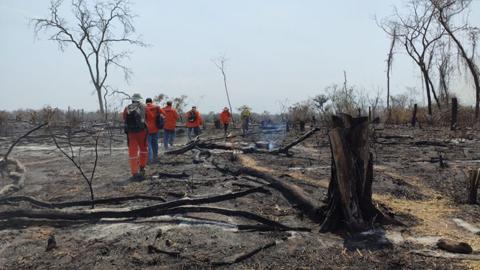 Lluvias-disminuyen-incendios-en-la-Chiquitania