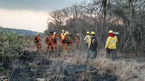 Reducen-a-17-los-incendios-en-la-Chiquitania