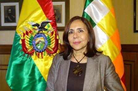 Longaric:--Los-paises-de-la-region-deben-comprender-que-Bolivia-tiene-un-gobierno-de-transicion-