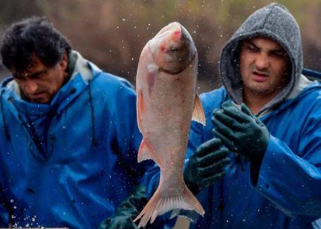 La-pesca,-un-termometro-infalible-de-la-crisis-climatica