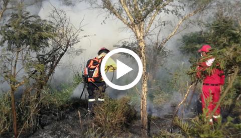 Incendio-forestal-deja-heridos-y-choques-en-la-ruta-a-Warnes