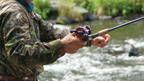 Pesca-un-pez-dorado-que-podria-ser-mutante