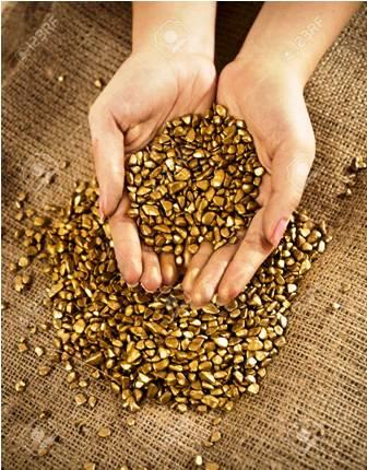 Identifican-a-quienes-compraban-oro-irregularmente
