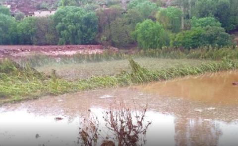 Perdida-de-produccion-agricola-por-desborde-de-rios