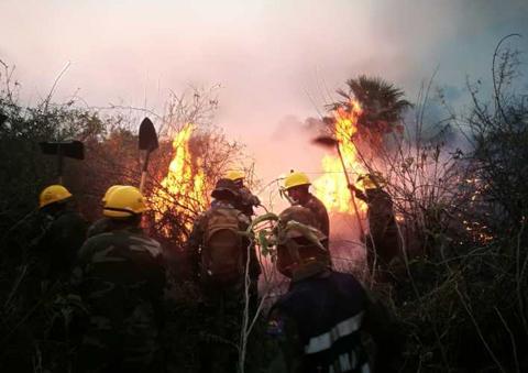 Policia-de-la-Chiquitania-encuentra-botellas-con-gasolina-y-llantas-ardiendo-en-medio-del-bosque