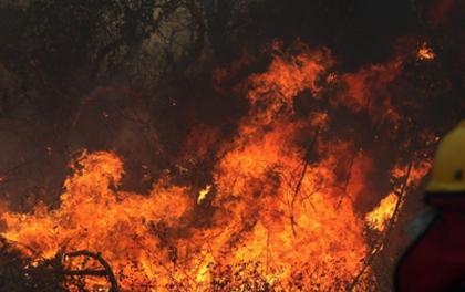 Santa-Cruz:-Reportan-47-incendios-forestales-en-13-municipios