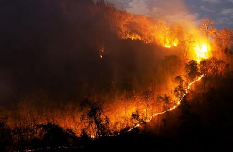 Seis-municipios-son-declarados-en-desastre-y-cuatro-en-emergencia