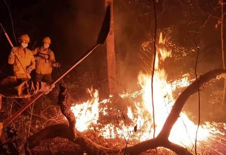 Incrementa-el-fuego-existen-51-incendios-activos-en-15-municipios