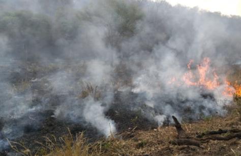 EEUU-apoya-a-Bolivia-con-$us-100-mil-para-combatir-incendios-forestales