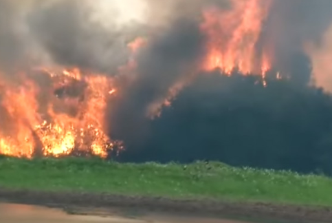 Reportan-82-incendios-forestales-activos-en-Bolivia