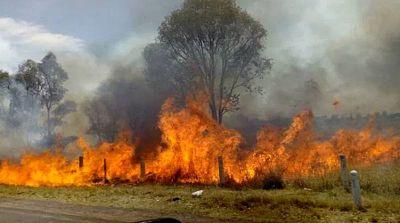 ABT-aprehende-en-flagrancia-a-cinco-personas-mas-realizando-quemas
