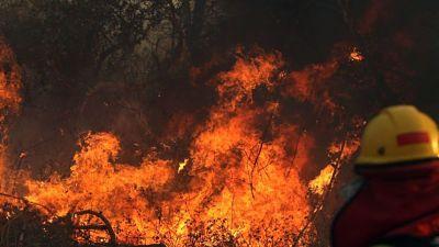 Avance-del-fuego-no-para-en-Santa-Cruz,-hoy-se-registran-38-incendios-forestales-activos
