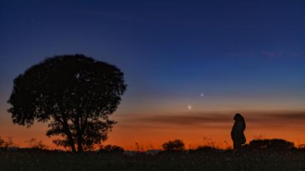 Venus-podria-ser-habitable-si-los-movimientos-de-Jupiter-no-influyeran-en-su-orbita
