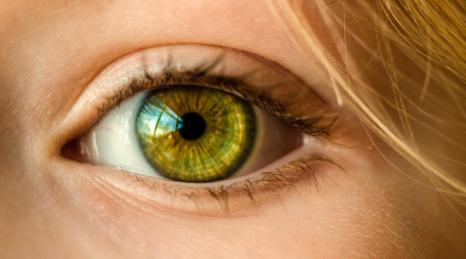 Los-humanos-tenemos-los-genes-para-regenerar-los-ojos-ciegos,-pero-la-evolucion-desactivo-esta-funcion