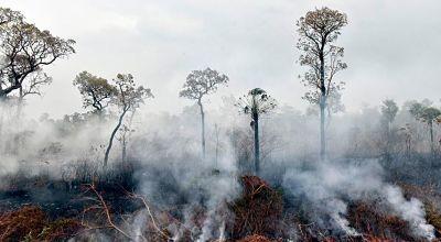 Disminuyen-a-nueve-los-incendios-forestales-activos-en-Bolivia