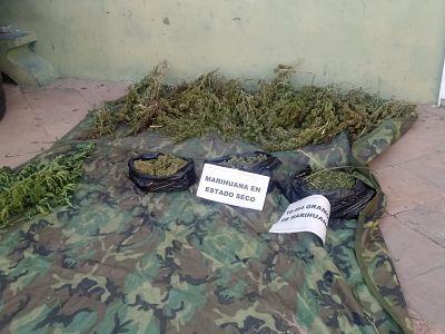 Fuerza-antidroga-confisco-cerca-de-ocho-toneladas-de-marihuana-en-Monteagudo