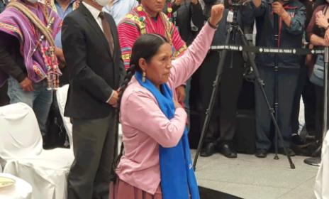Representante-de--Bartolinas--asume-como-Ministra-de-Culturas,-Descolonizacion-y-Despatriarcalizacion