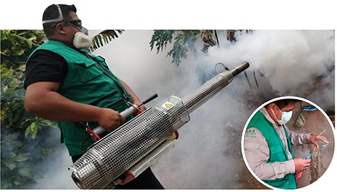 Alerta-por-simultanea-epidemias-de-Dengue-y-COVID-19