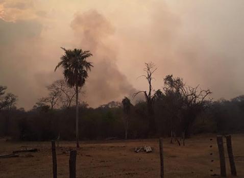Santa-Cruz-continua-con-20-incendios-forestales-activos