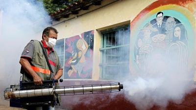 Paraguay-emite-una-alerta-epidemiologica-ante-el-aumento-de-casos-de-dengue