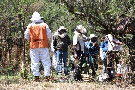 Los-apicultores-suspenden-bloqueo