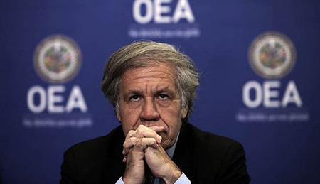 El-Gobierno-reafirma-que-votara-por-la-reeleccion-de-Luis-Almagro-como-Secretario-General-de-la-OEA