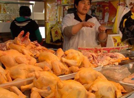 Garantizan-produccion-de-pollo