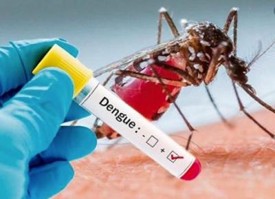 Suman-a-8-el-numero-de-fallecidos-por-dengue-en-Santa-Cruz