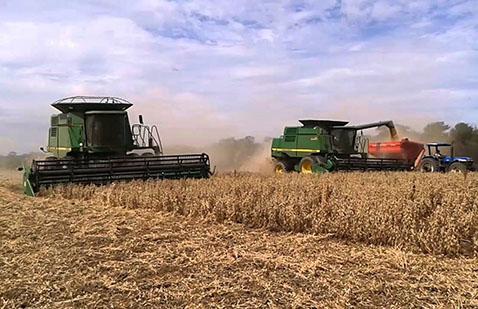 Presentan-propuesta-para-reactivar-el-sector-agropecuario