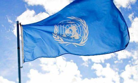 DDHH-de-la-ONU-pide-modificar-Decreto-4231-para--no-criminalizar-la-libertad-de-expresion-