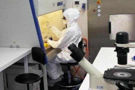 Covid-19:-Laboratorios-procesaron-mas-de-45-mil-pruebas-en-lo-que-va-de-la-pandemia;-el-41%-dieron-positivo
