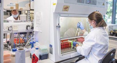 Dos-vacunas-contra-coronavirus-producen-respuesta-inmunitaria-y-son-seguras
