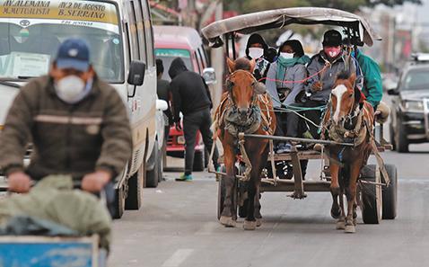 Alcaldia-crucena-prohibe-las-carrozas-jaladas-por-caballos