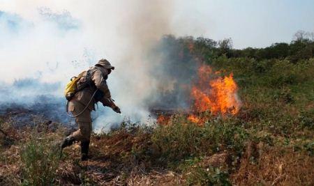 El-Pantanal,-santuario-de-biodiversidad,-sufre-los-incendios-mas-graves-de-los-ultimos-20-anos