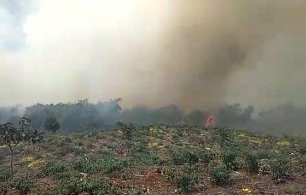 Incendio-consume-cultivos-agricolas-y-vegetacion-tropical-en-Tablas-Monte
