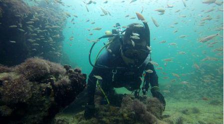 Identifican-los-restos-del-primer-barco-utilizado-para-el-trafico-de-esclavos-mayas