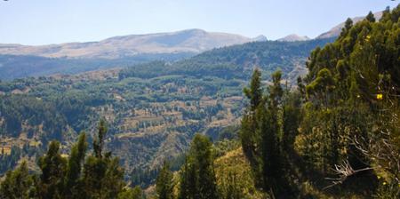 Cochabamba:-preven-aprobar-en-los-siguientes-dias-una-estrategia-para-conservar-el-parque-Tunari