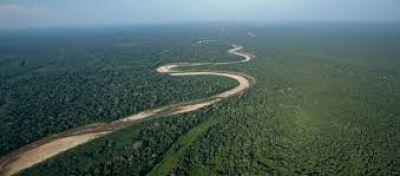 Tarija:-cinco-frentes-politicos-participaran-en-dialogo-por-los-bosques-y-el-medioambiente