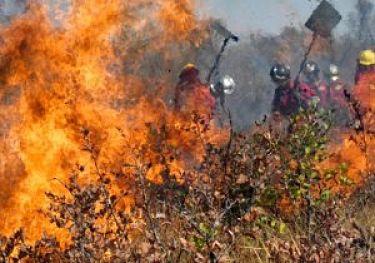 Entre-ayer-y-hoy-se-activaron--5-incendios-mas-en-Santa-Cruz,-que-totalizan-un-total-de-22