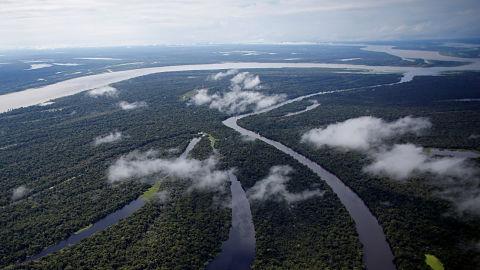 El-asteroide-que-acabo-con-los-dinosaurios-habria-creado-la-selva-amazonica