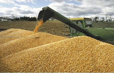 -CANIOB-rechaza-propuesta-de-Garcia-Linera-de-crear-impuesto-a-las-agroexportaciones