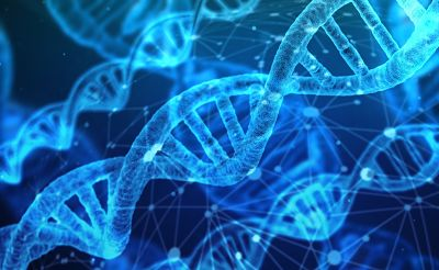 Un-grupo-de-cientificos-anuncio-que-secuencio-por-primera-vez-todo-el-genoma-humano